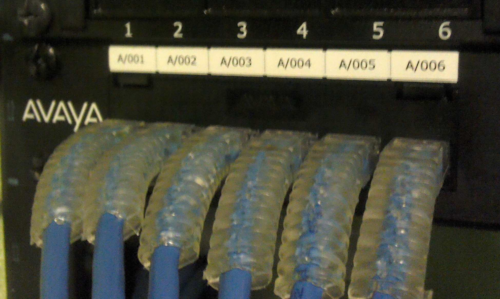 Patch Panel labels, labeling solutions, patch panel labels, patch cord labels